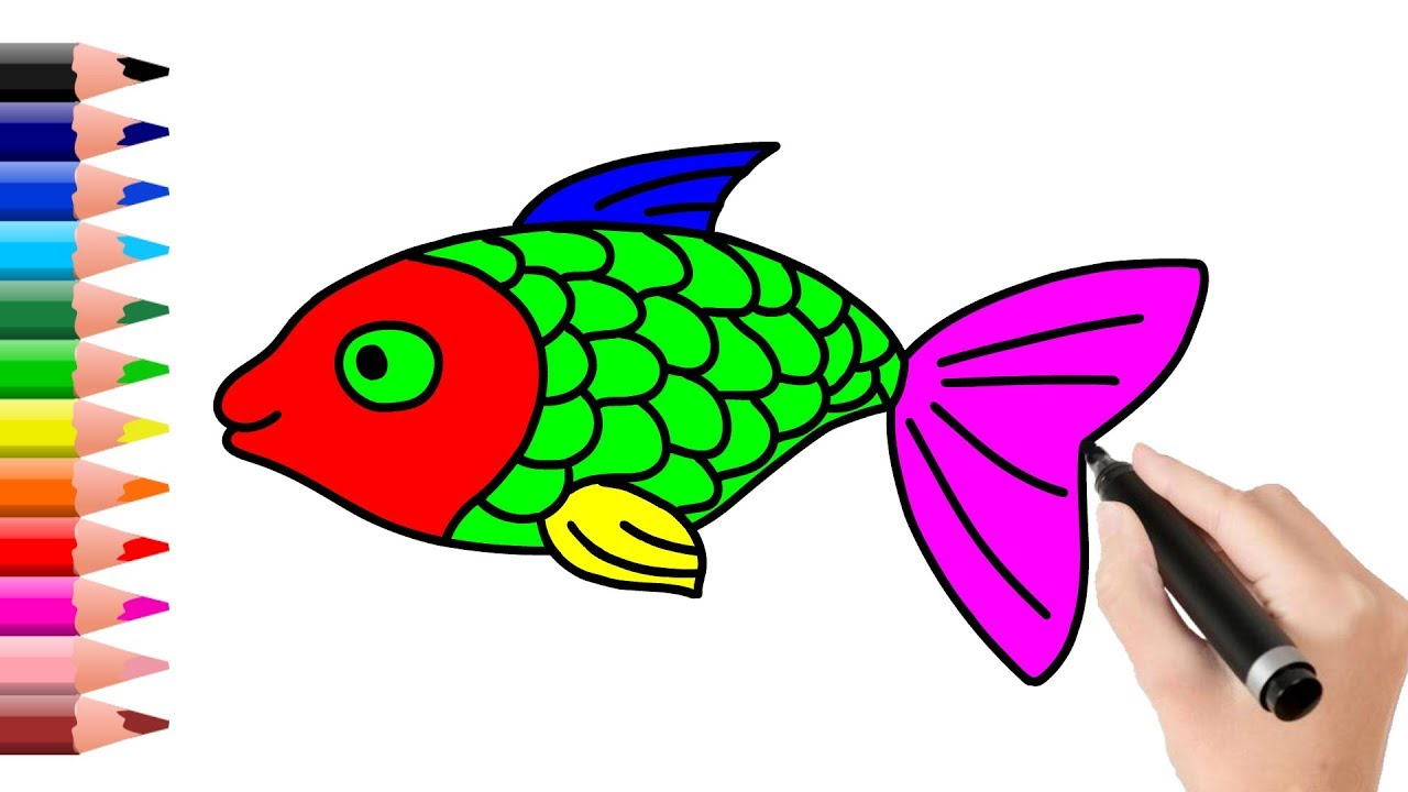 1280x720 How To Draw And Coloring Tilapia Fish Learn Random Color