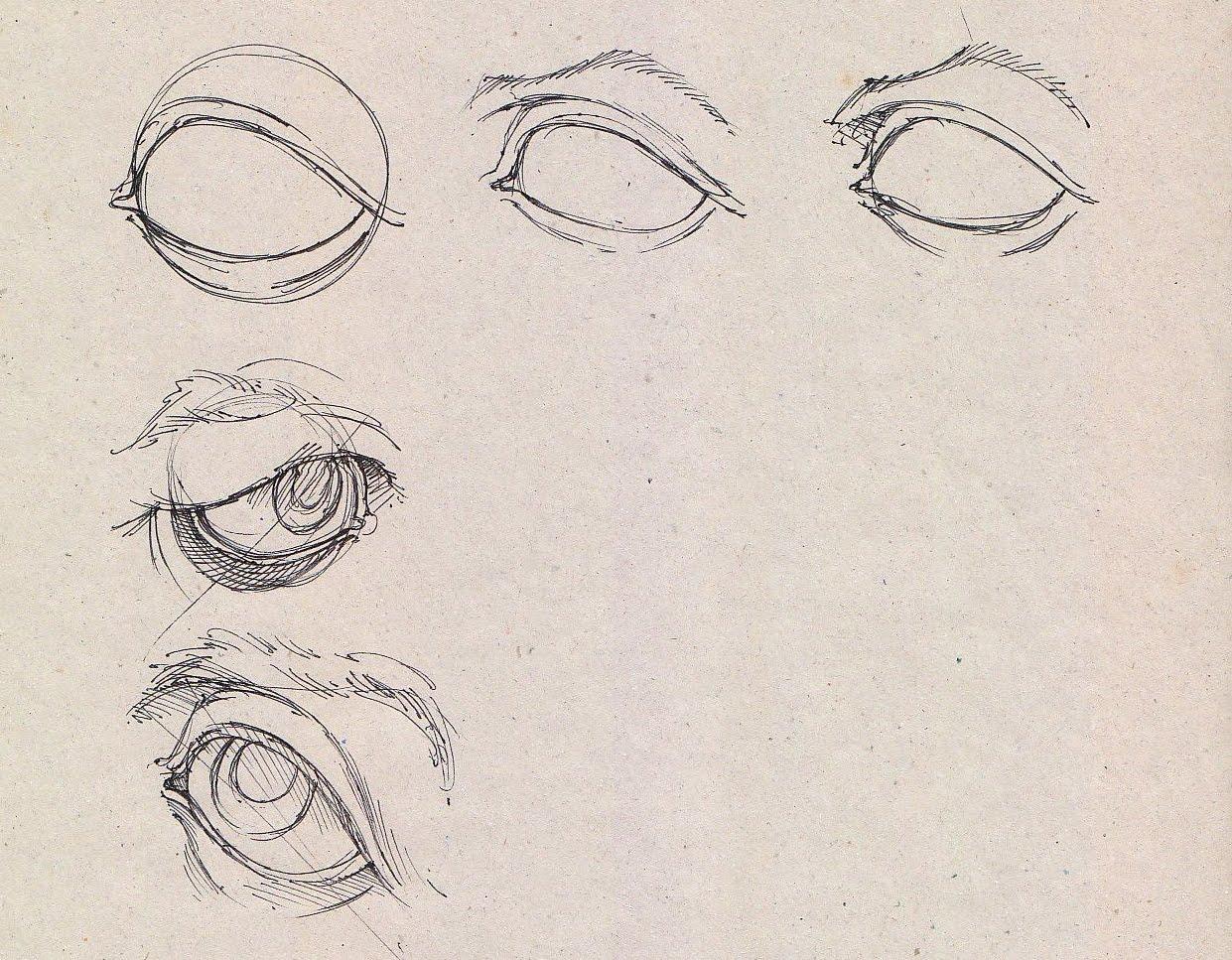 1241x967 Maaaaaaark! Eyes