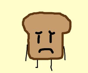 300x250 Sad Toast