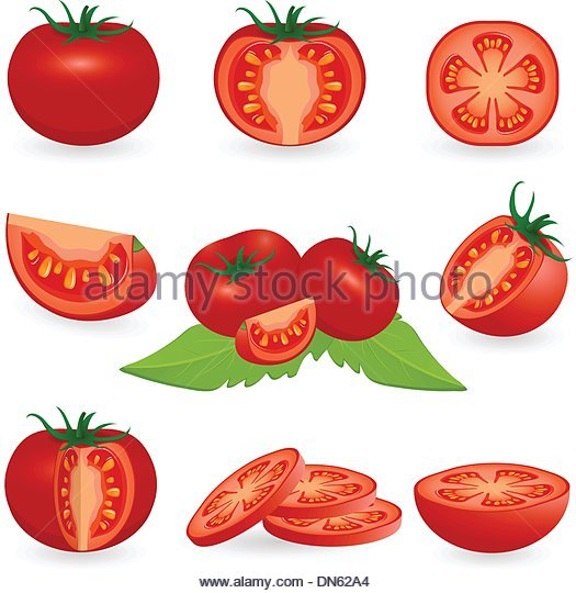 Tomato Drawing at GetDrawings.com | Free for personal use Tomato ...