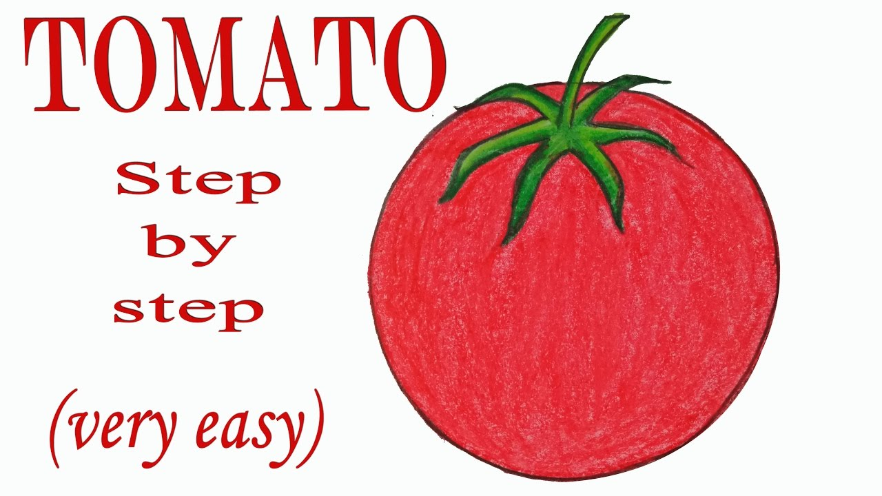 Tomato Drawing At Getdrawings Free For Personal Use Tomato