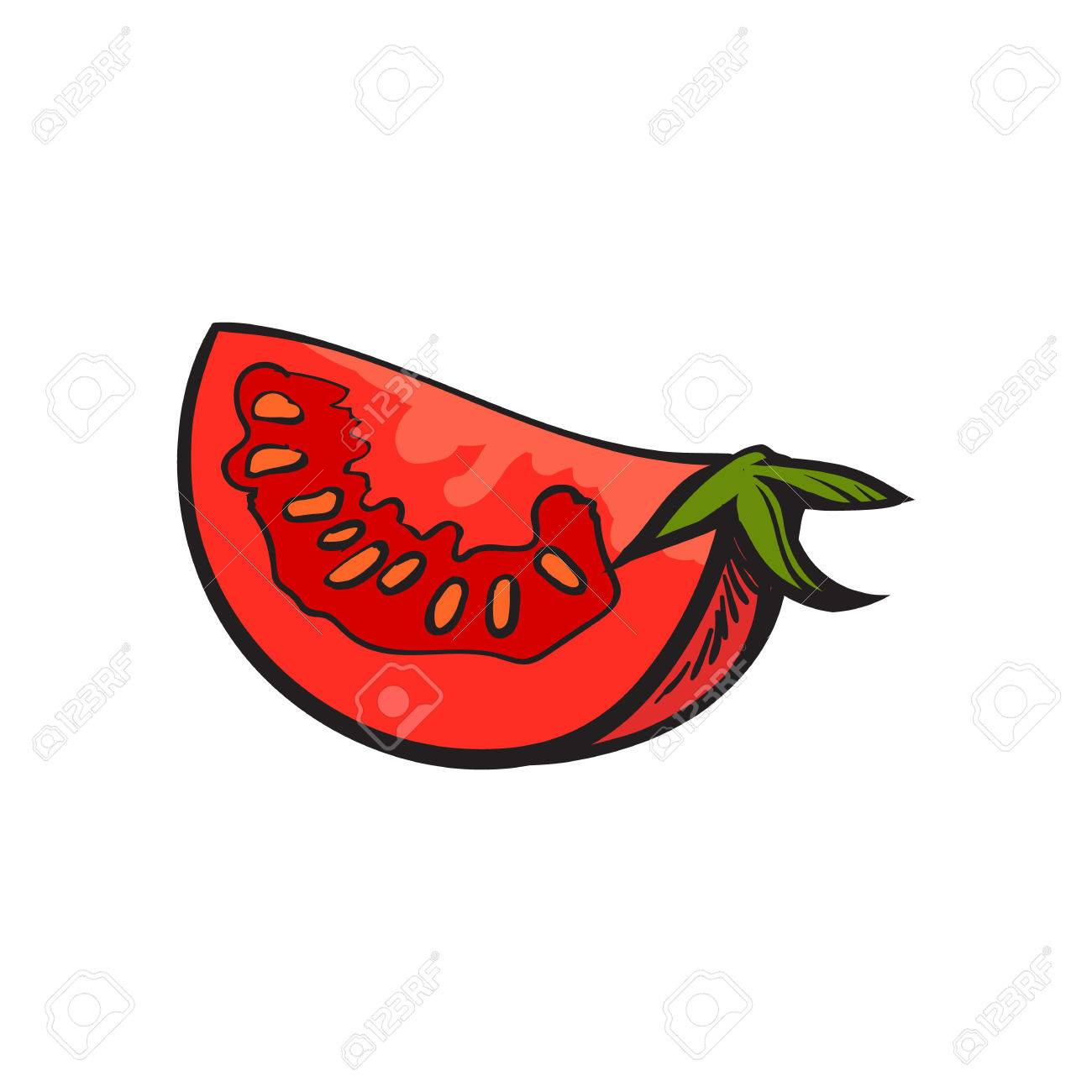 1300x1300 Sketch Style Drawing Of Ripe Red Tomato Slice, Vector Illustration