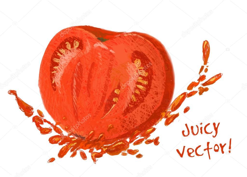 1024x735 Drawing Slice Of Tomato With Juice Stock Vector Lemuur