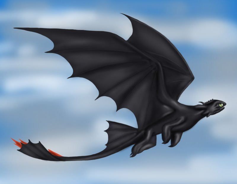 800x622 Learn How To Draw Toothless Flying From How To Train Your Dragon