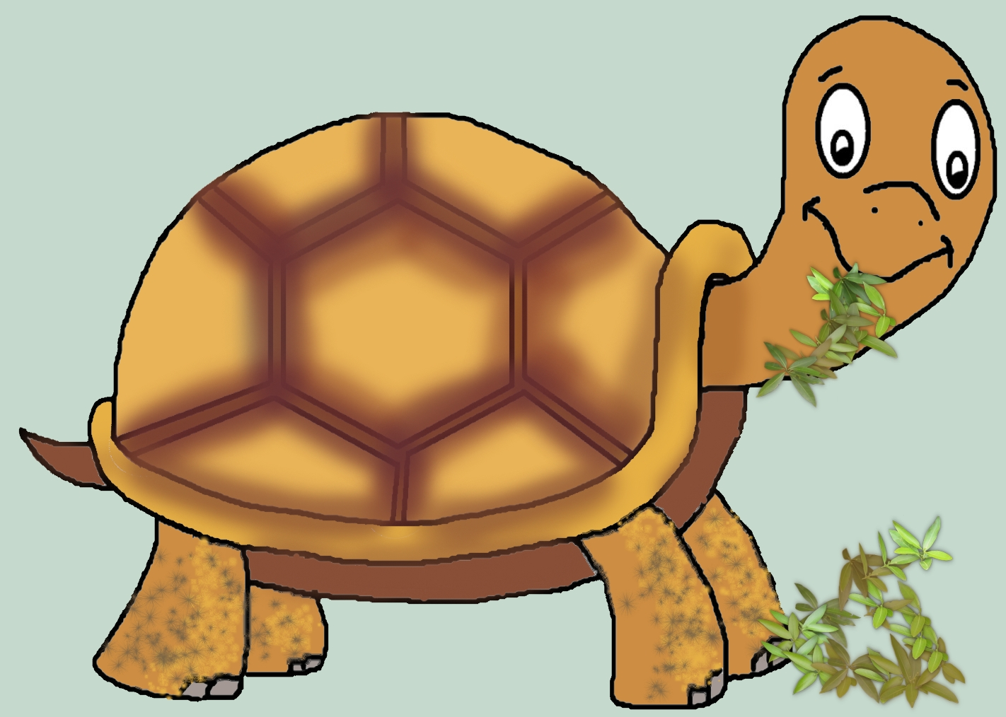 1422x1014 Don'T Call Me Turtle Lyric Power Publishing Children's Books