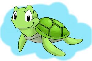 300x200 How To Draw A Tortoise