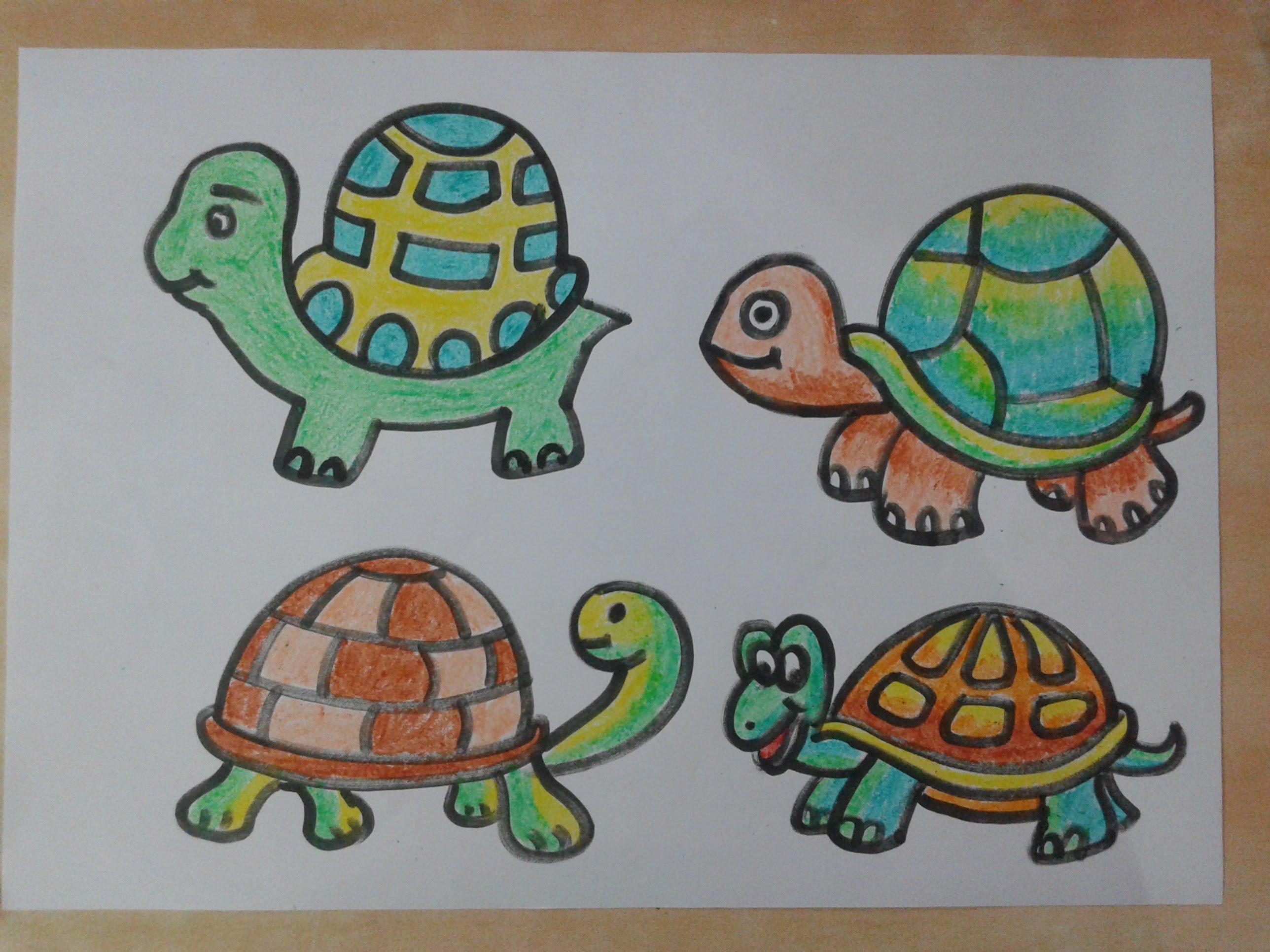 2576x1932 How To Draw Tortoise