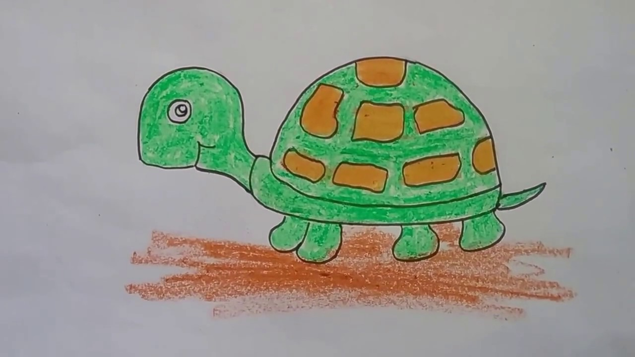 1280x720 How To Draw A Tortoise With Basic Shapes,tortoise Drawing For Kids