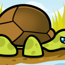 220x220 How To Draw How To Draw A Tortoise For Kids