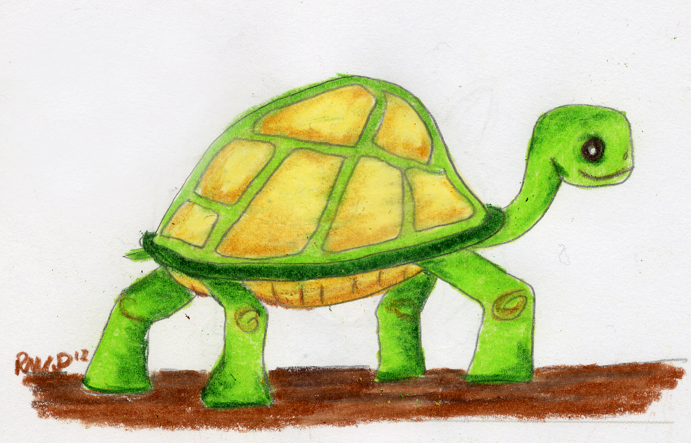 1347x863 Tortoise Drawing Art Of My Mind
