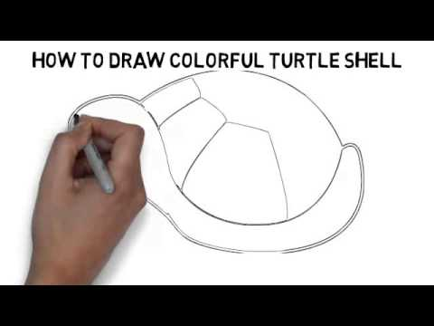 480x360 How To Draw Colorful Turtle Shell Quickly And Easily