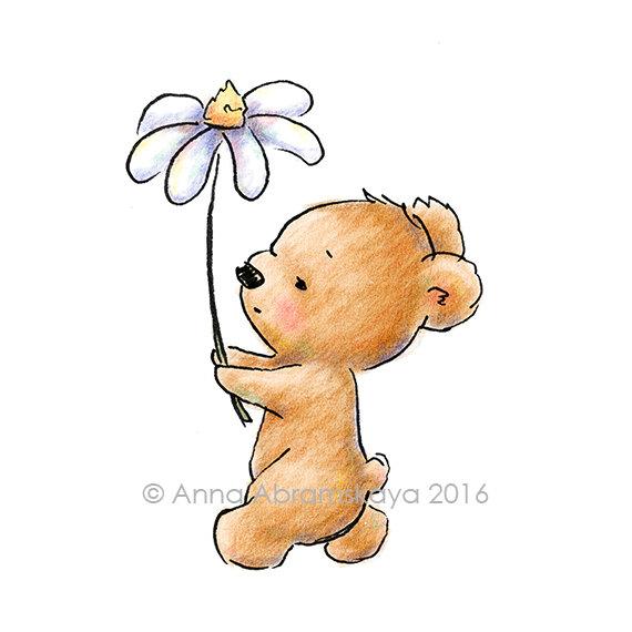 570x570 The Drawing Of Cute Teddy Bear Walking With A Huge Daisy. Nursery