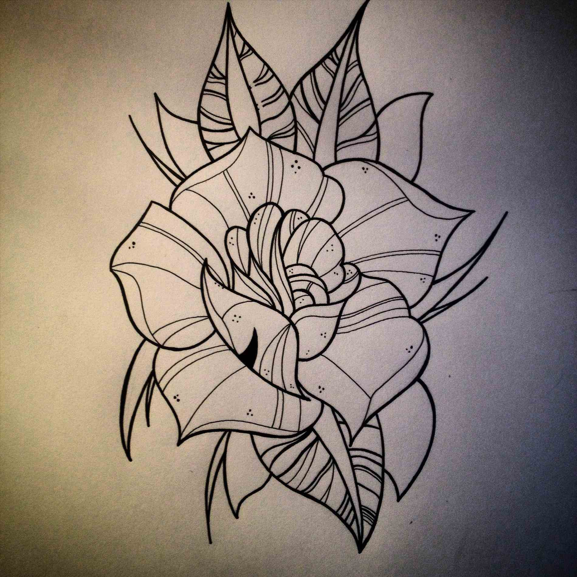 Traditional rose drawing at free for for Neo traditional rose tattoo