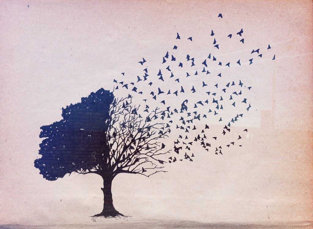 1024x752 Pix For Gt Birds In Trees Drawing Arts Tatoo And Tattoo