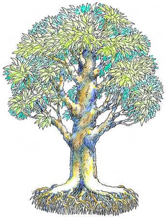 343x450 Stock Illustration