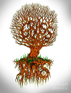232x300 Tree Roots Drawings