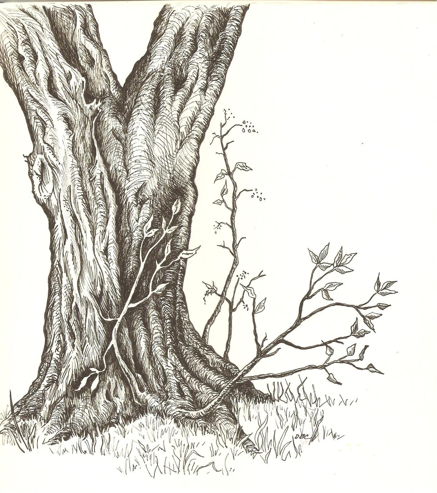 1417x1600 Art Beneath The Cottonwoods Sketchbook Revisited