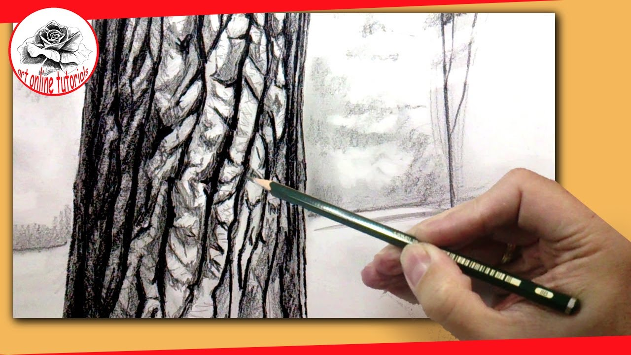 1280x720 How To Draw A Realistic Tree With Pencil How To Draw Textures