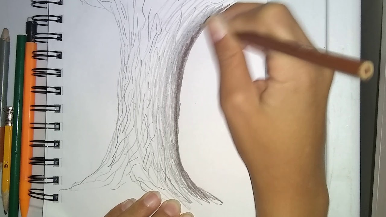 1280x720 How To Draw A Realistic Tree Bark Step By Step