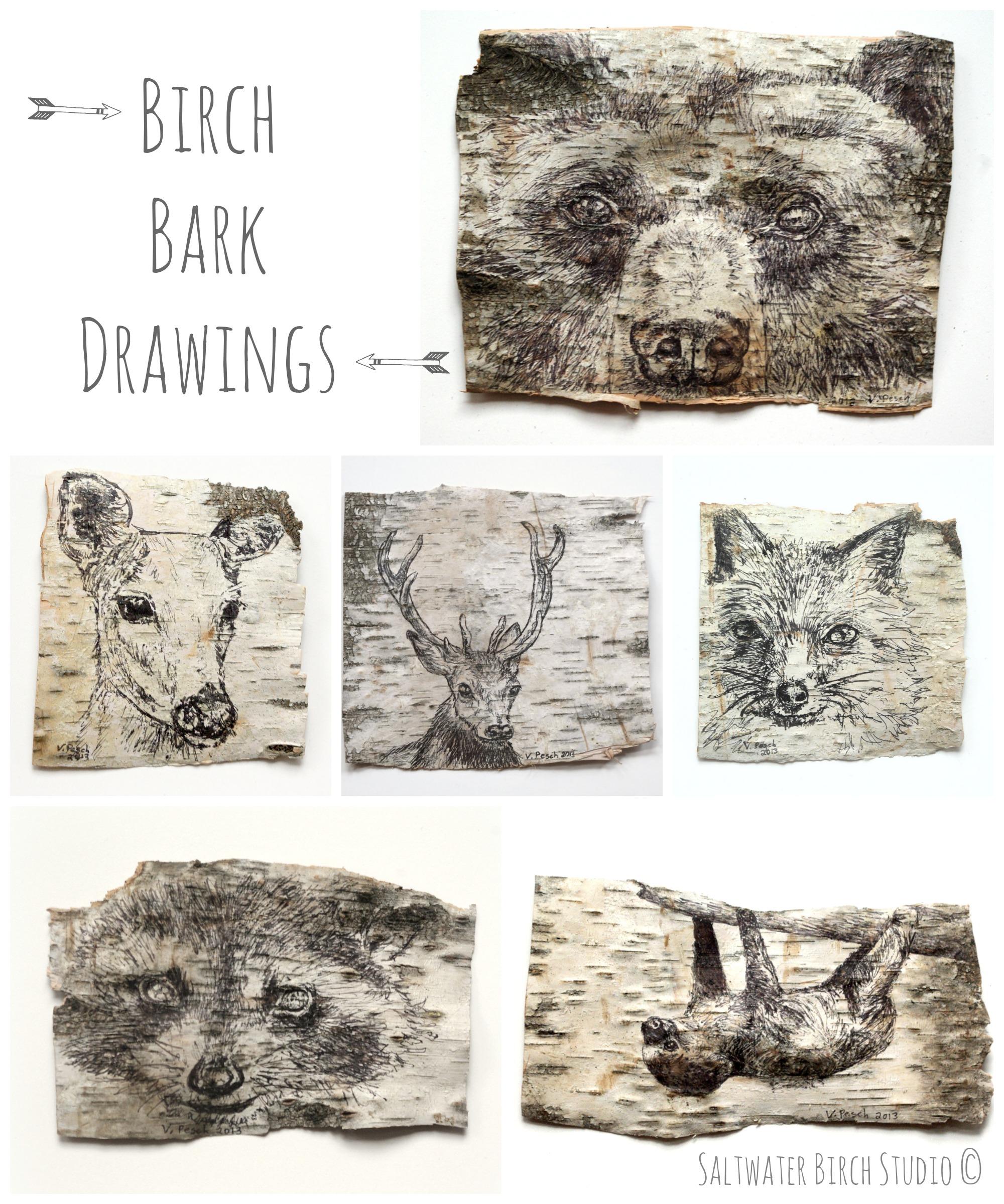 2000x2400 Birch Bark Art Saltwater Birch Studio