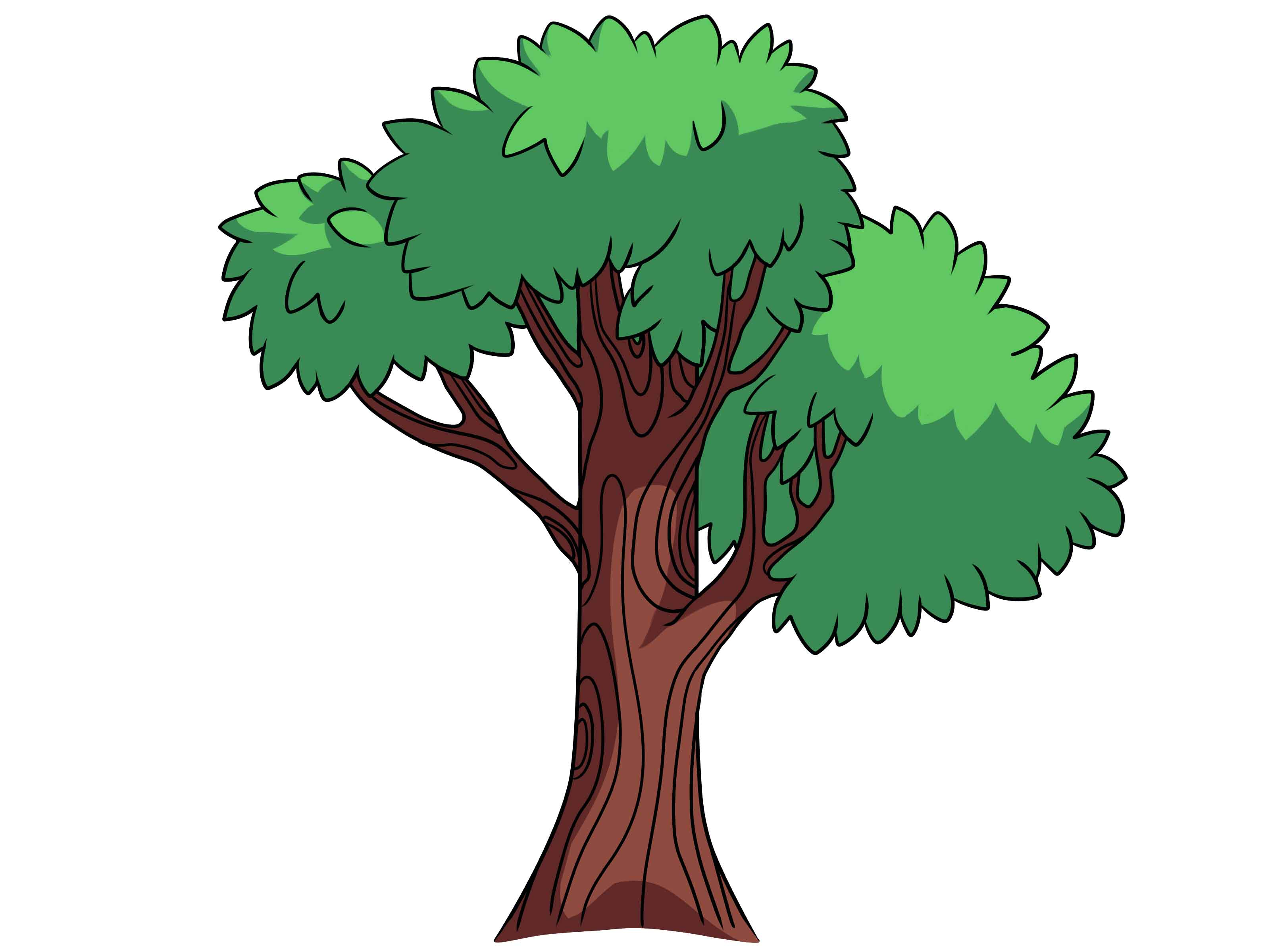 Tree Cartoon Drawing at GetDrawings.com | Free for personal use Tree ...