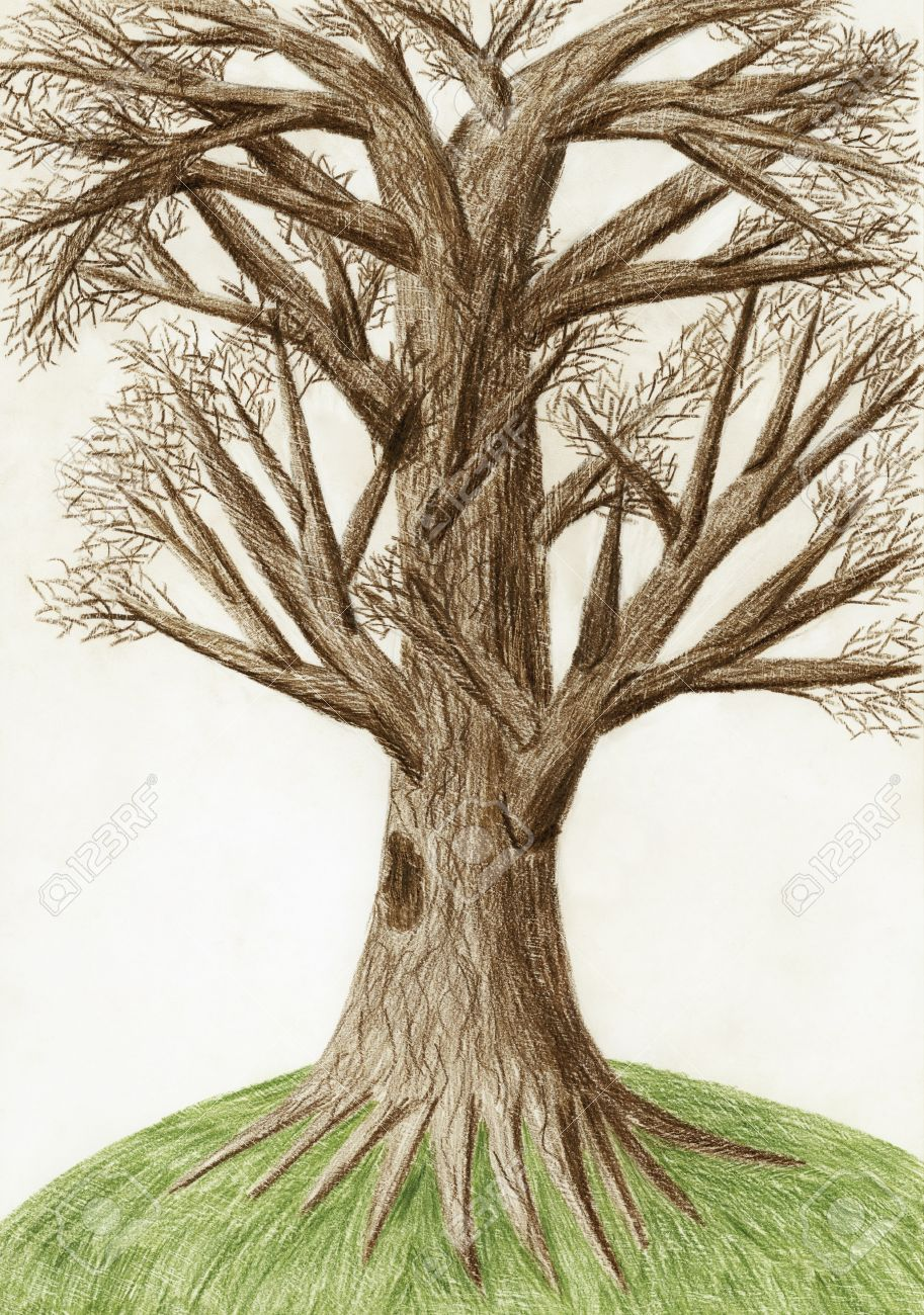 913x1300 Artistic Color Pencil Drawing The Tree Stock Photo, Picture