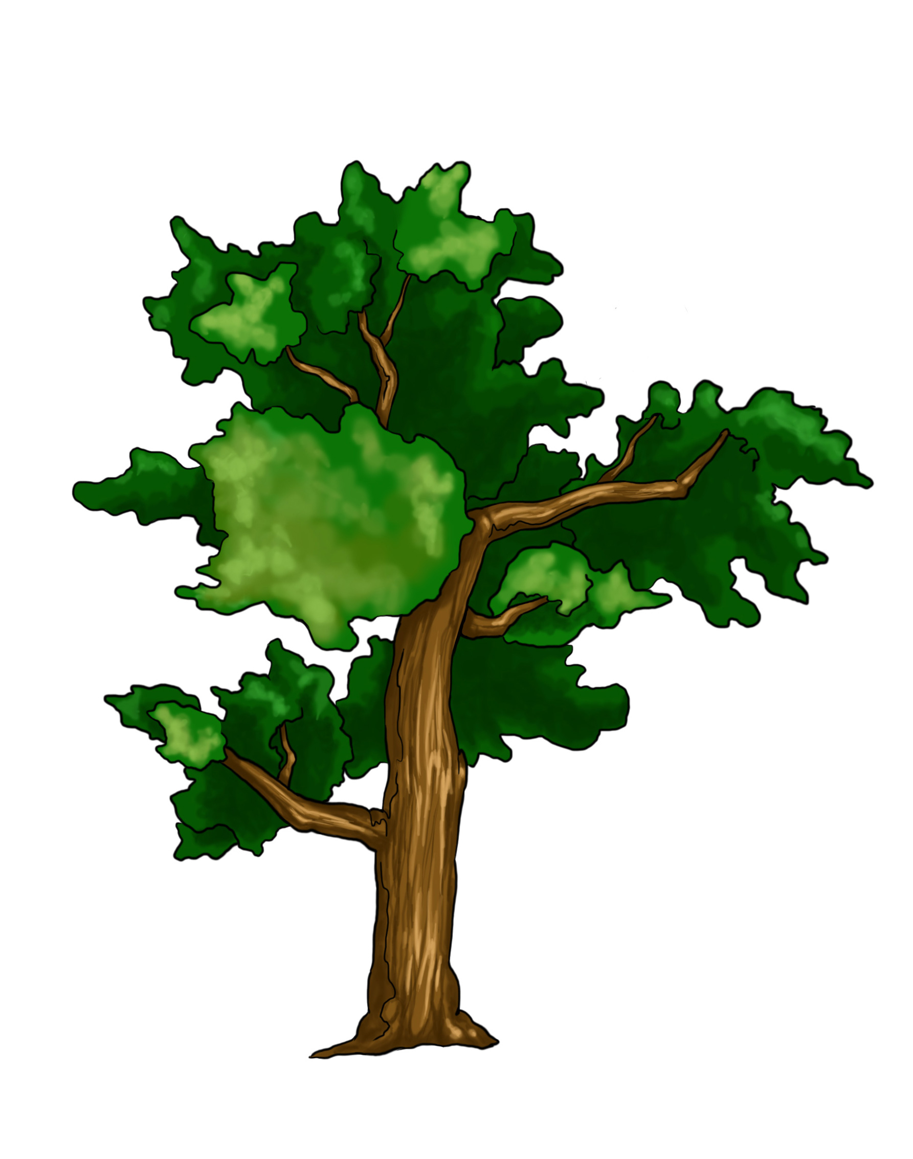 1785x2266 Colored Drawing Of Tree