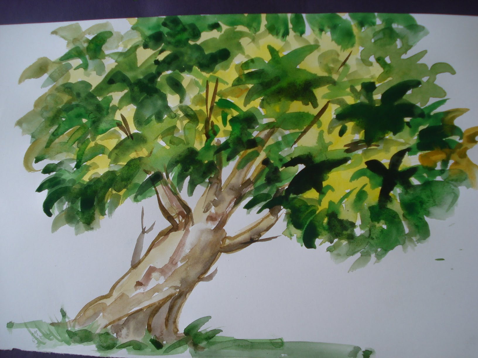 1632x1224 How To Draw Tree Painting With Using Water Colour