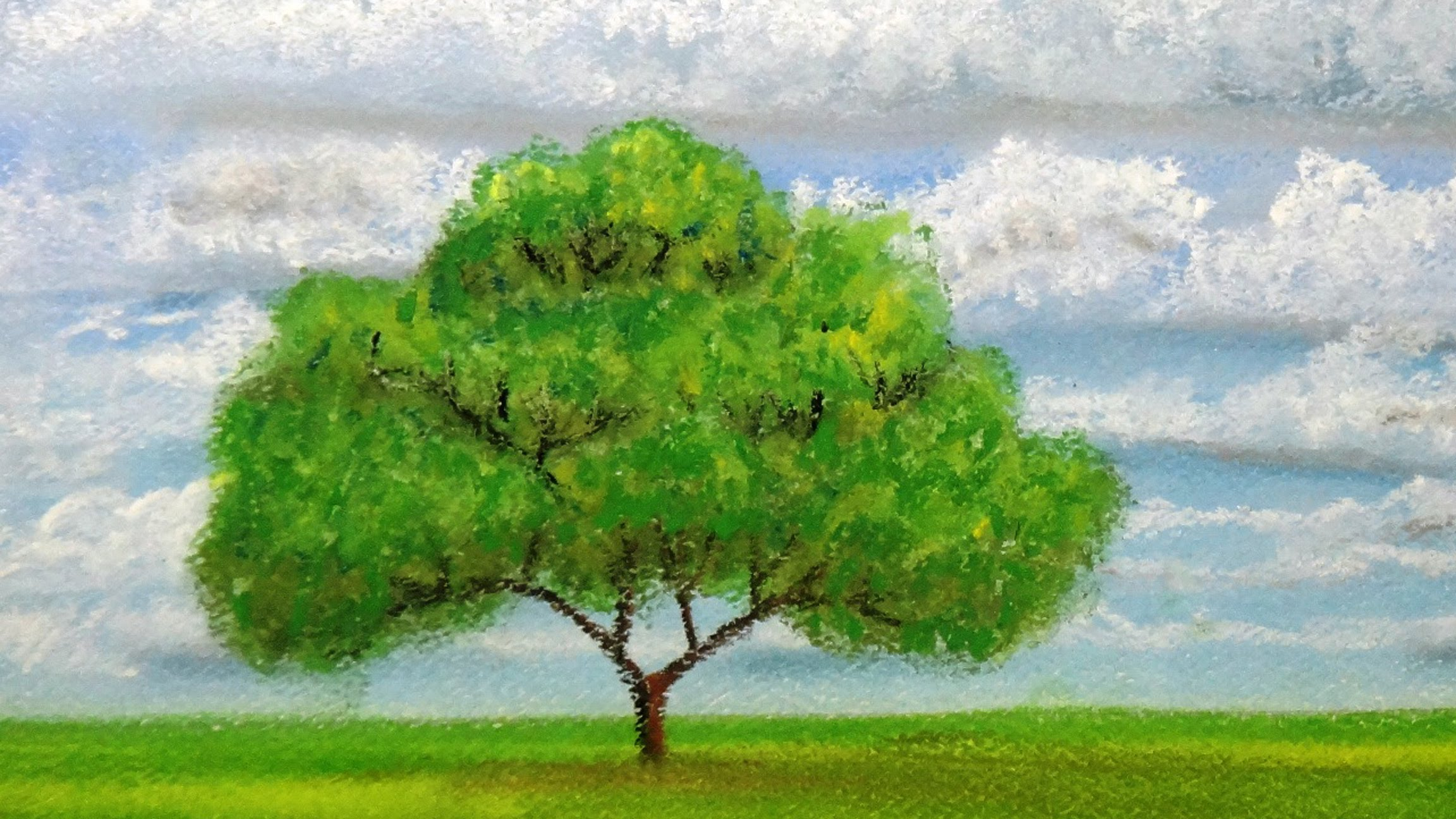 2304x1296 How To Draw A Tree