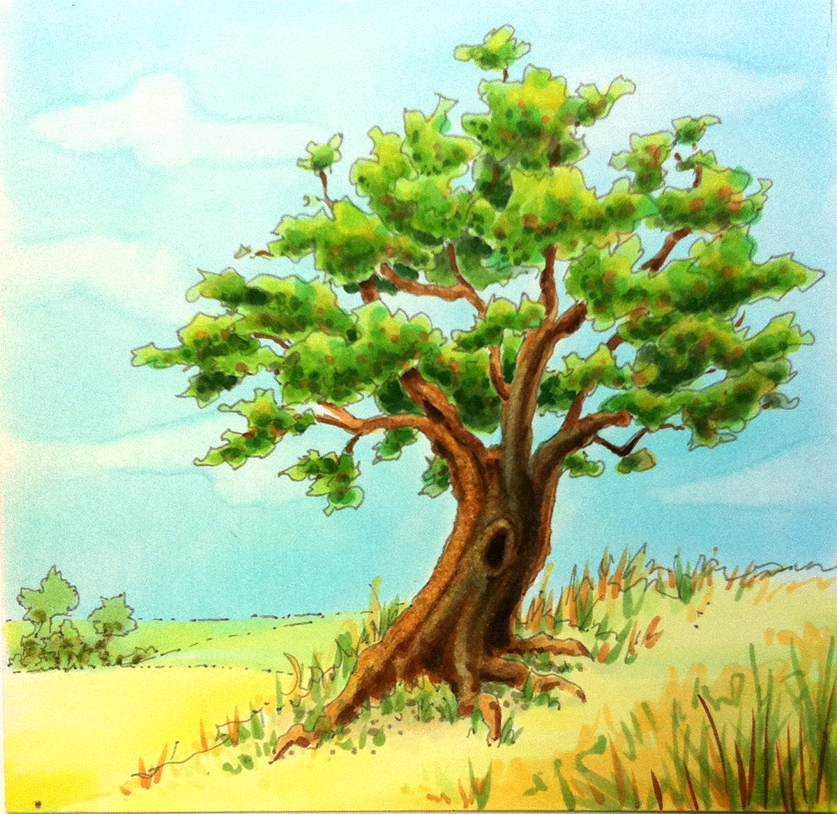 1200x1168 Photos Colored Drawing Of Tree,