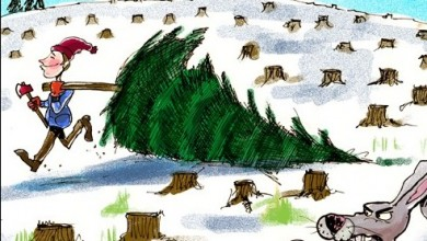 390x220 Cutting Down Christmas Trees is Not Green ❤ Cartoon