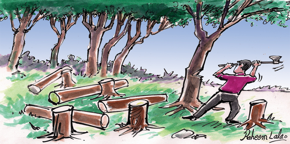 1000x496 Only when the last tree has been cut… Pakistan Today