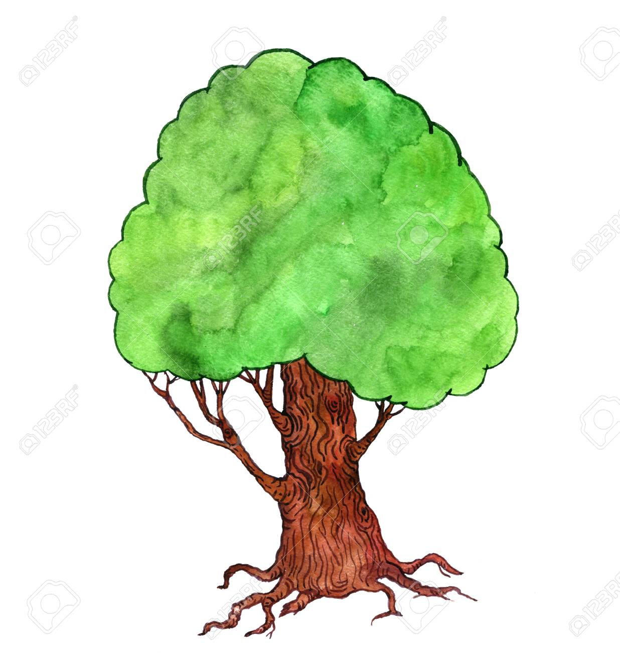Tree Drawing Cartoon at GetDrawings.com | Free for personal use Tree ...
