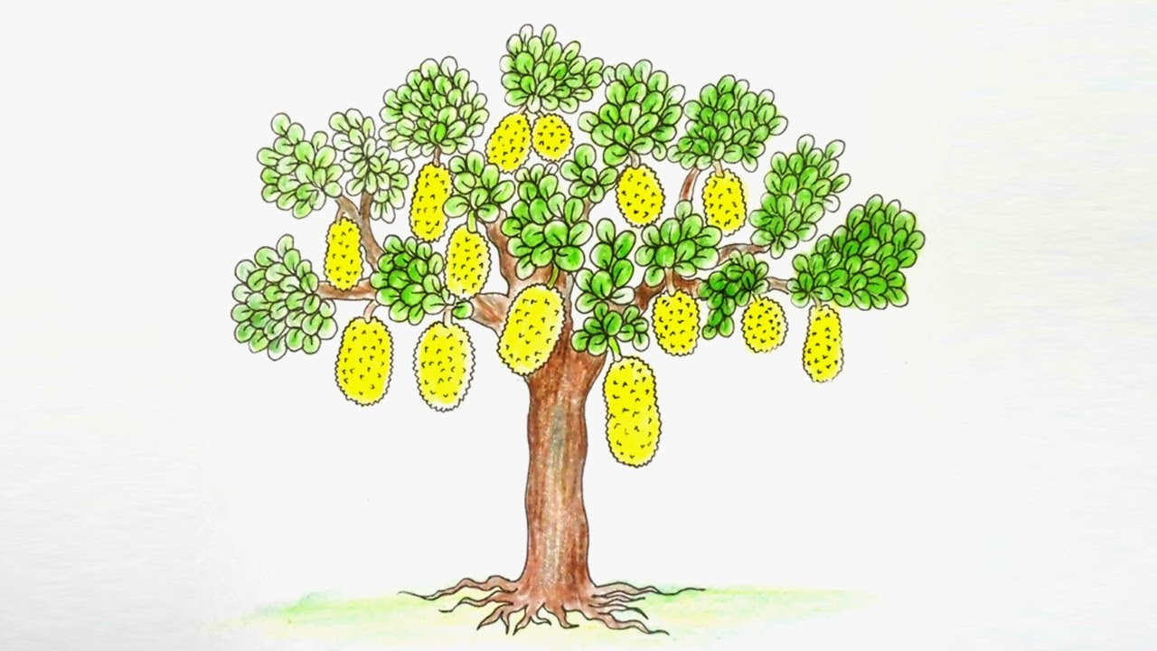 Tree Drawing Easy at GetDrawings.com | Free for personal use Tree ...