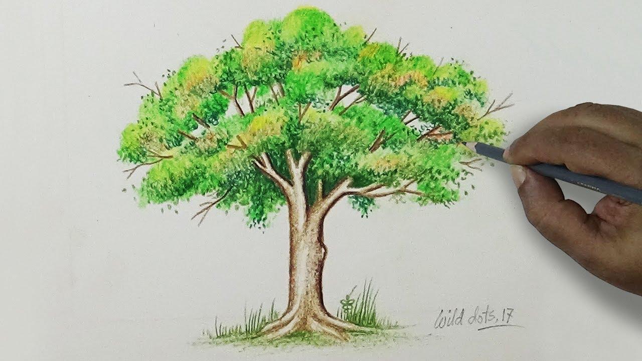 1280x720 Tree
