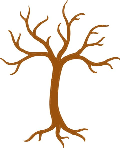 480x595 Tree With No Leaves Tree Clip Art