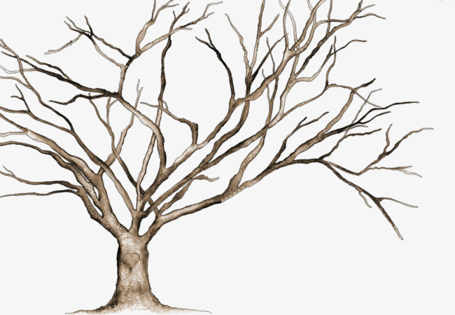 650x450 Vector Withered, One, Tree, No Leaves Png Image And Clipart