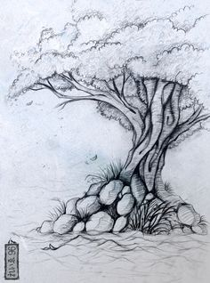 236x318 Photos Pencil Sketch Drawing On Tree,