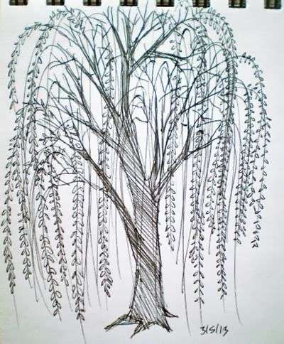 400x484 Willow tree drawing Go Back Gt Pix For Gt Simple Willow Tree