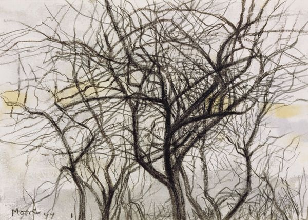 600x429 Henry Moore Trees In Winter Drawings Henry Moore