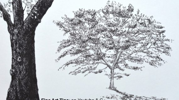 570x320 Drawings Of Tree Trunks Pen Amp Ink Drawing Tutorials How To Draw