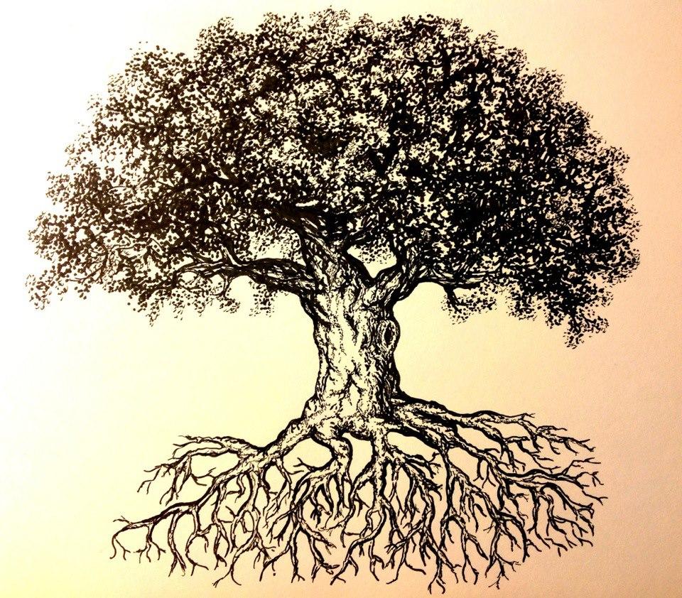 960x842 Tree Ink Drawing My Artwork Lkb Drawings, Ink