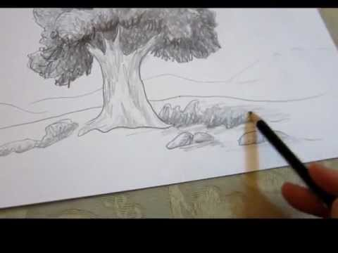 480x360 How To Draw A Tree In Landscape