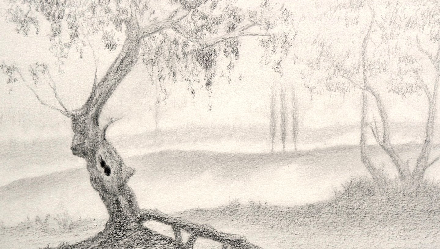 1439x814 How To Draw A Tree