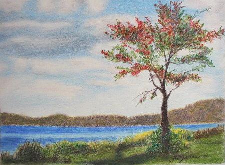 450x331 Little Landscape Drawing