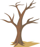 Tree No Leaves Drawing at GetDrawings | Free download