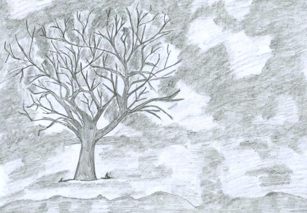 998x692 My Drawing