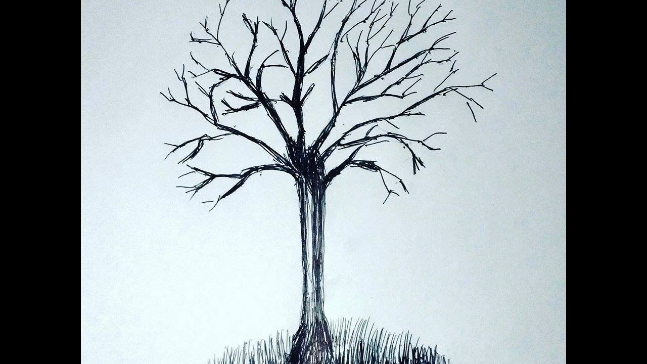 1280x720 Tree With No Leaves Drawing How To Make Simple Tree Without Leaves