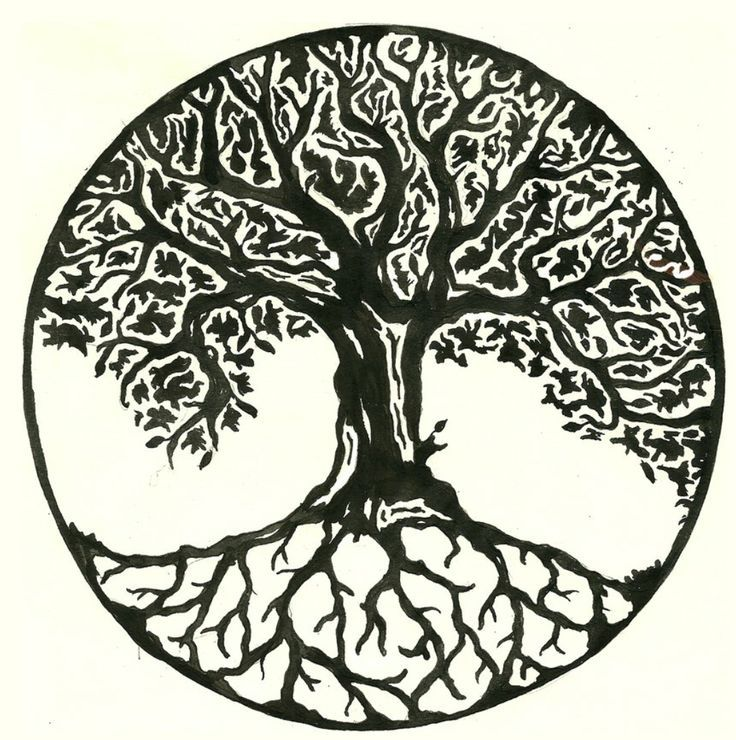 picture regarding Tree of Life Printable known as Tree Of Lifetime Dreamcatcher Drawing at  No cost