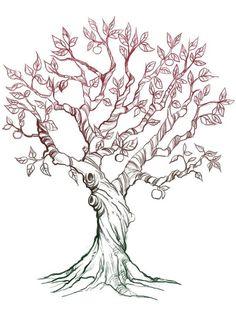 236x314 Line Drawing Leaves Twisting Tree By Ellfi